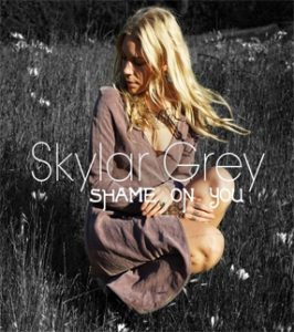 Skylar Grey Track Shame on You